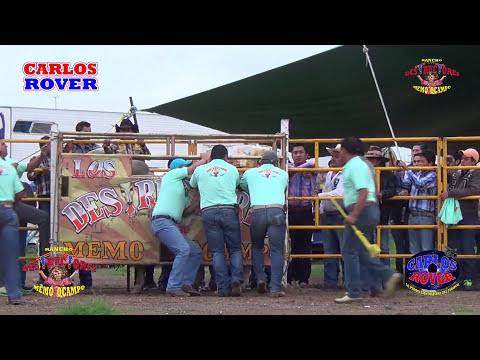 PARA QUE LOS VALLAN CONOCIENDO¡¡¡¡ Los Nuevos Toros de Rancho Los Destructores de Memo Ocampo