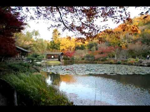 東山動植物園1102