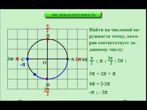 10 класс. Алгебра. Числовая окружность.