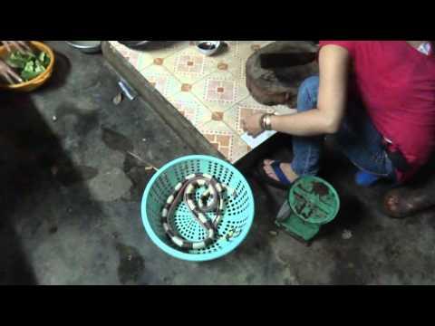 Вьетнам, приготовление змеи. Ленточный крайт.