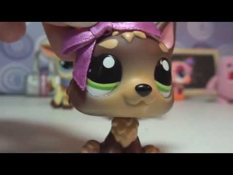 Littlest Pet Shop: Kandy TV Episode #10