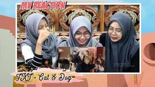 TXT - CAT AND DOG MV REACTION!!!