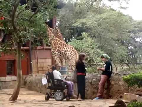 Disabled on Wheelchair Vacations and Travel in Kenya, East Africa