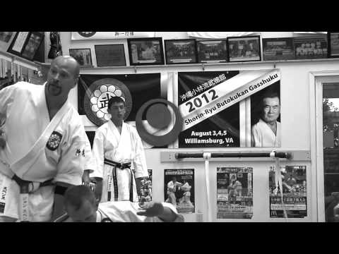 Shorin-Ryu Karate of Williamsburg