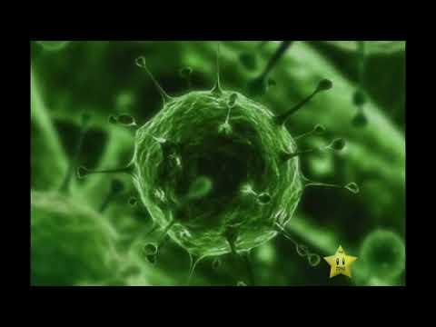 ¿La cura del SIDA en 2014?