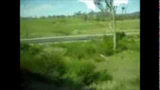 Train From Sydney To Coffs Harbour Australia See The Landscape On The Way