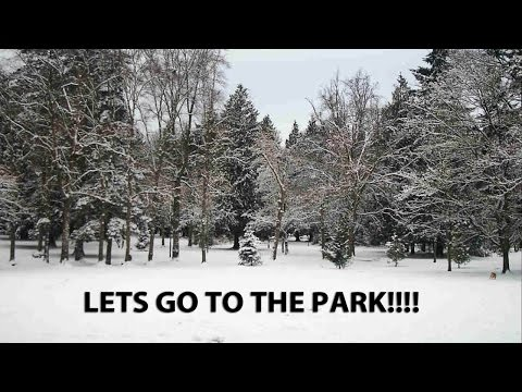 LETS GO TO THE PARK!!! (MLD310) My Trucking Life
