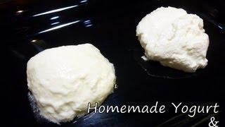 Cooking | Homemade Yogurt Homemade Greek Yogurt Recipe | Homemade Yogurt Homemade Greek Yogurt Recipe