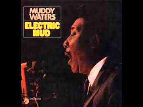 MUDDY WATERS - Tom Cat PSYCH/BLUES (1968)