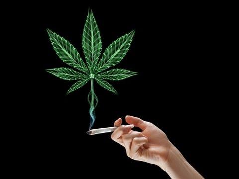 Marijuana & Schizophrenia Connection