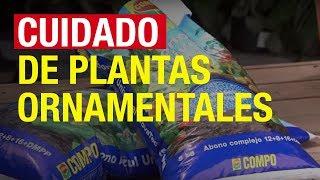 Nutrición de plantas ornamentales (compo jardinería)