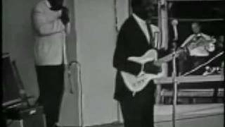 Muddy Waters Hoochie Coochie Man Newport 1960