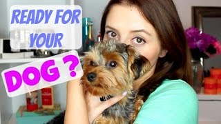 ARE YOU READY FOR YOUR DOG? ADOPTING/BUYING A PUPPY