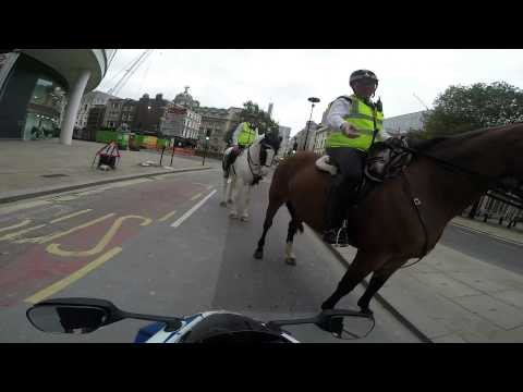Biker stopped by police on horses for doing a wheelie