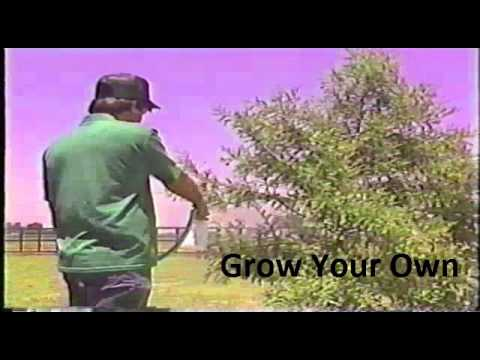 GROW YOUR OWN SONG