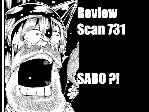 [fr] Review One Piece Scan 731 - L'opération S.o.p video