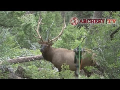 A-1 Archery presents David Holder hunting in Wyoming and killing a monster 6 x 6 bull on the first day with a compound bow! We believe this may be the best i...