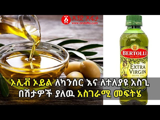 Olive Oil Helps To Prevent and Treat  Cancer