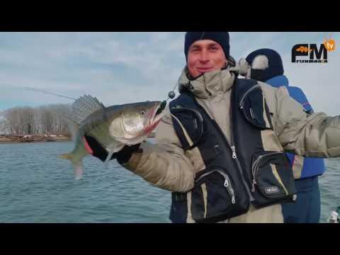рыбалка на судака на иртыше в омске