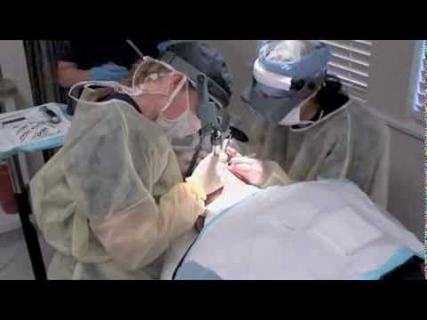 Live Hair Transplant on Cancer Patient - Dr. Sara Wasserbauer