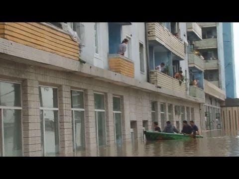 ��鮮�����������大���������洪水���������中����風���大��被害������人�被害�大�����糧�足�深����念����