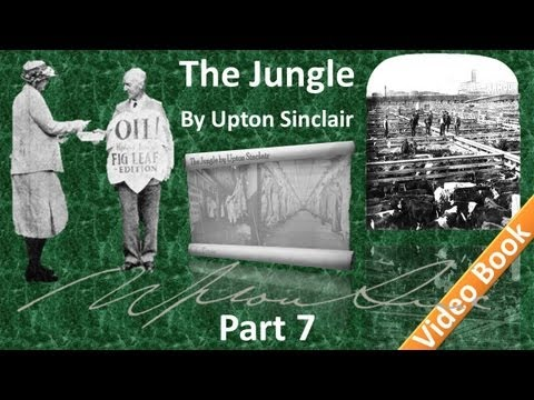 Part 7 - The Jungle Audiobook by Upton Sinclair (Chs 26-28)