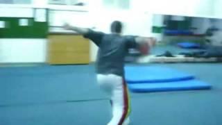 "Bartek aka ""Capoeira"" - Compilation 2008"