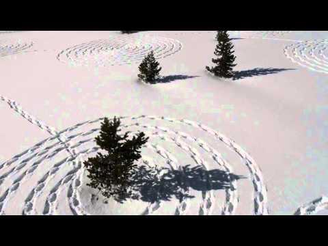 Snow Drawings 2012
