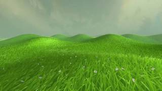 Grassy terrain