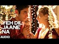 'Yeh Dil Jaane Na' Full Audio Song | Swanand Kirkire | T-series