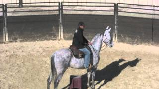 What to do when riding a horse that gets out of control.