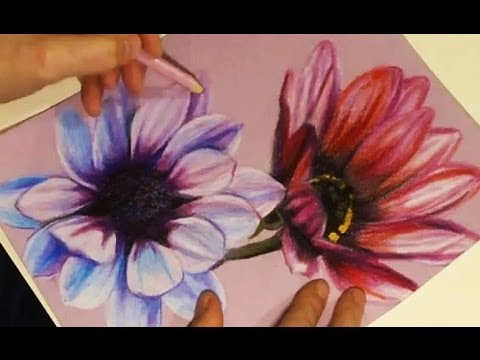 Speed Drawing - Painting Two Flowers with Colored Pencils on Rose Paper