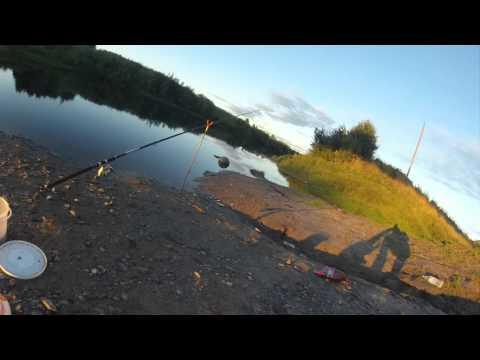 липецк рыбалка на реке воронеж