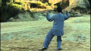 56 Chen Style Taiji Quan - Demo and Explanation Guide