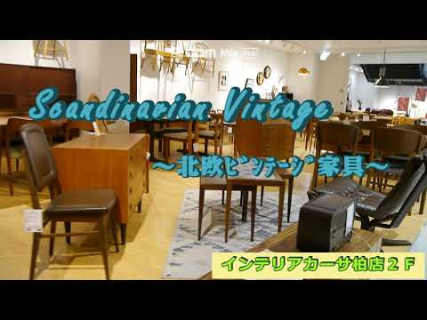 2Fビンテージフロア 散歩【動画】part3