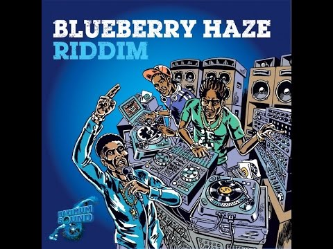 BRAND NEW 2016**RIDDIM BLUEBERRY HAZE BY MAXIMUM SOUND