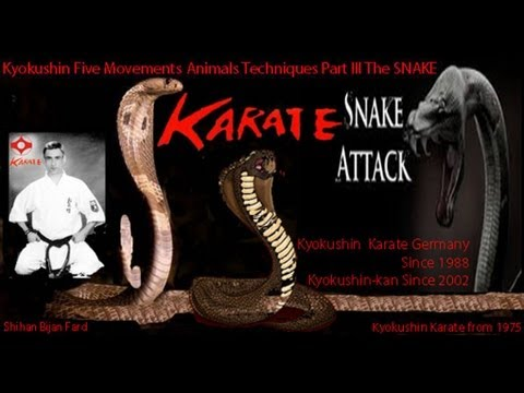 KYOKUSHIN RYU Five Movements Animals Techniques Part III The Snake Image 1