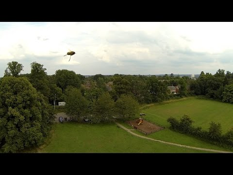 Quadcopter attacked by a swarm of Bee's