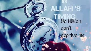 Islamic whatsapp status - o allah the almighty
