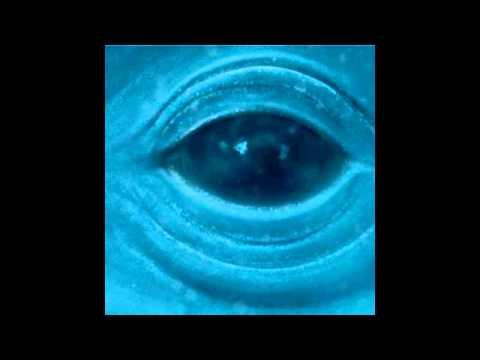 Frank Ocean - Official Blue Whale Instrumental + REAL Downlad Link