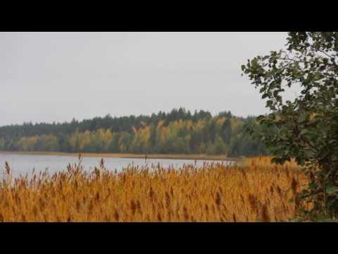 карелия рыбалка на озере нюк карелия