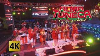 Alma Tuneca - Concierto Tunecazos Bailables 4K
