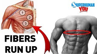 """How To Get The Chiseled """"Lower Chest Cup"""""""