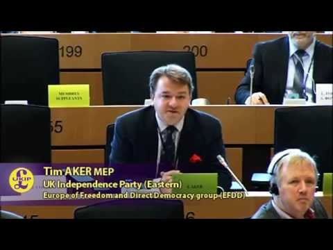 UK port system needs no EU fixing - UKIP MEP Tim Aker