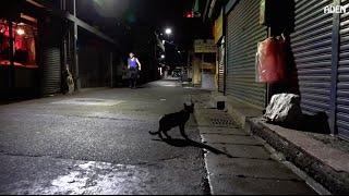 One Night in Taipei - A Night Walk
