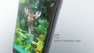 nature wallpaper hd android app