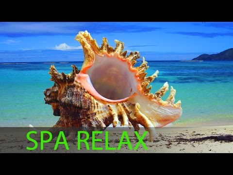 6 Hour Best Relaxing Spa Music, Background Music, Soothing Music, Massage Music ☯357 video