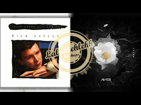 Never Give Up Without You - Rick Astley vs Avicii , Sandro Cavazza (Mashup)