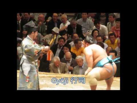 A LARGE Intro to Sumo Wrestling