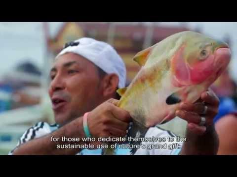 Vídeo Plano Safra da Pesca e Aquicultura